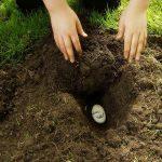 begravenwoord