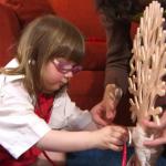 jouer au docteur des arbres